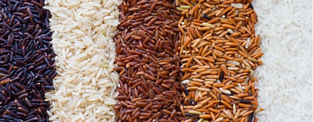 Riz et risotto